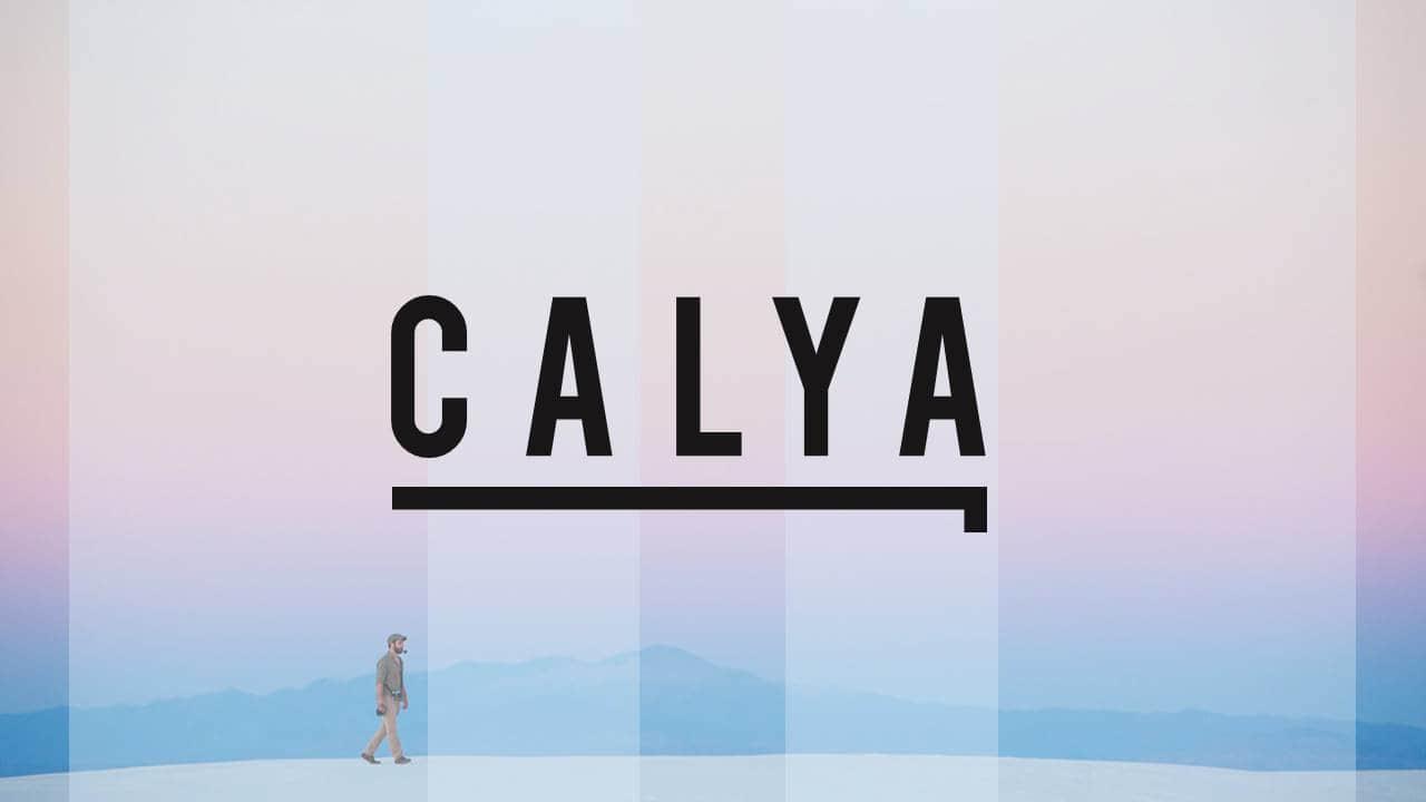 幻灯片模板CALYA版式设计简洁风格欧美时尚PPT