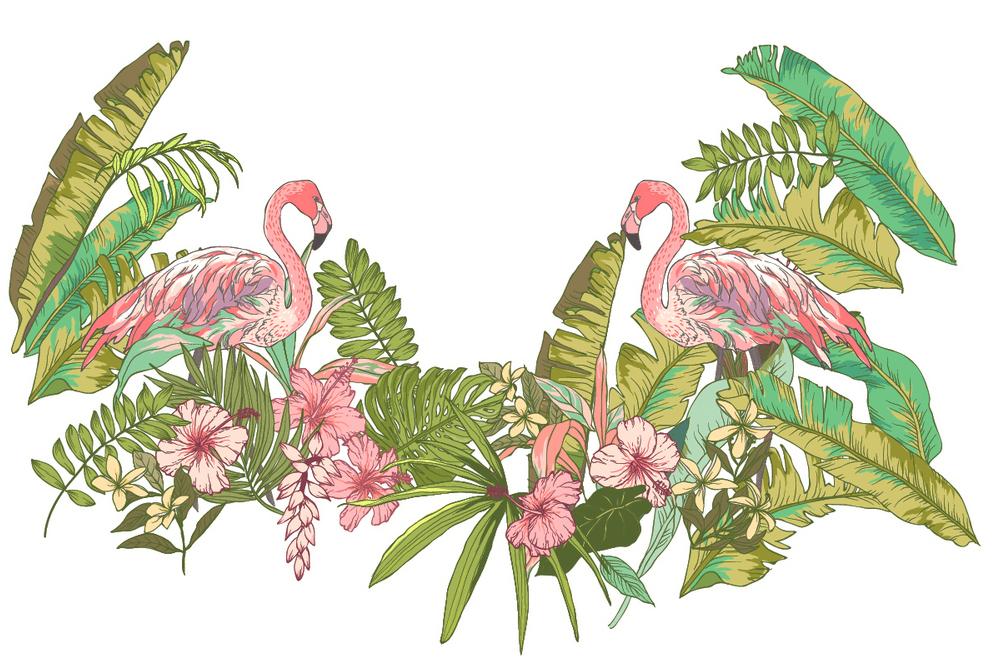 INS风火烈鸟图案设计素材背景装饰